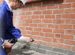 indexCellarDampProofing